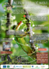 Poste-GeckoA0_.pdf - application/pdf