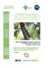 2019_025_gecko_bourbon.pdf - application/pdf